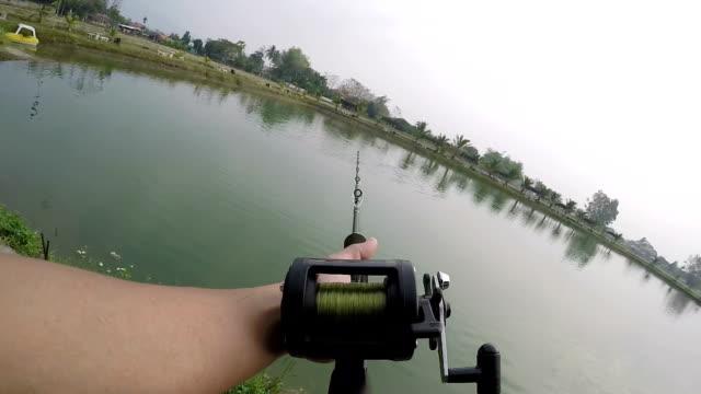 big fish freshwater fishing. - fishing reel stock videos and b-roll footage
