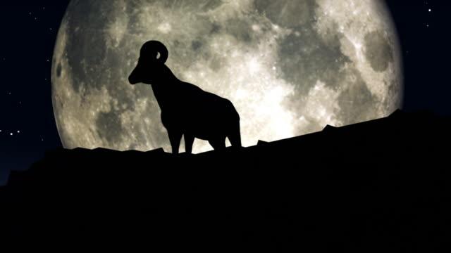 big horn sheep sillhouette - bighorn sheep stock videos & royalty-free footage