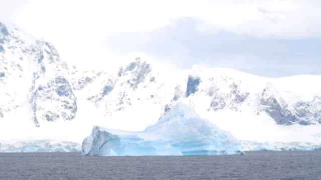 big iceberg floating in the antarctic sea - antarctica iceberg stock videos & royalty-free footage
