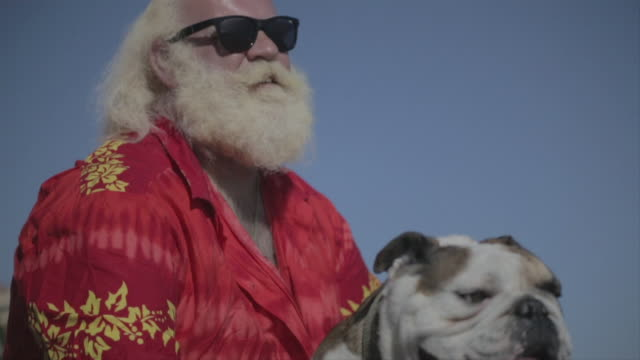 m/s big man w/ white long hair (santa claus), beard and moustache, caressing his bulldog in the beach - beard stock videos & royalty-free footage