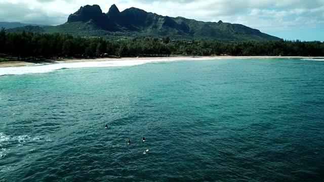 マウイ島の小さな入り江を越えて大きな山 - 谷点の映像素材/bロール