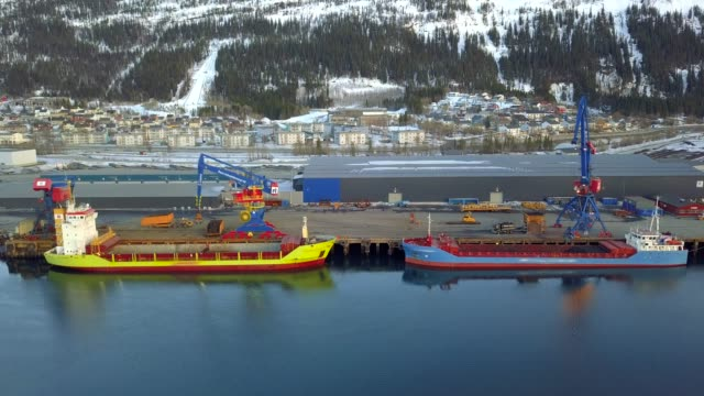 big ships import/export facility and business logistic and cranes - norvegia video stock e b–roll