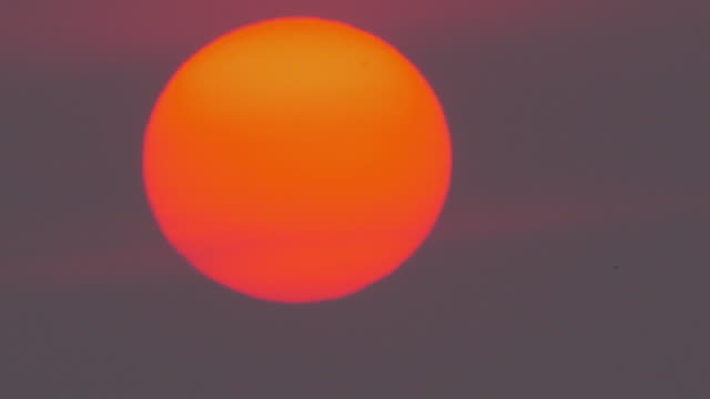 big sunset on dusty sky - on top of stock videos & royalty-free footage