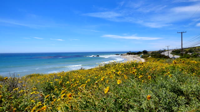 big sur spring time, ca: 4k - coastal road stock videos & royalty-free footage