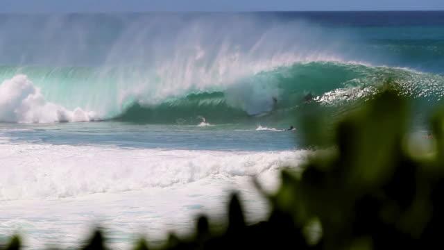 vídeos de stock, filmes e b-roll de big wave breaking at pipeline in hawaii with surfer& bodyboarder caught in it - pipeline wave