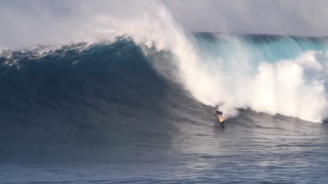 big wave surfing - large stock videos & royalty-free footage