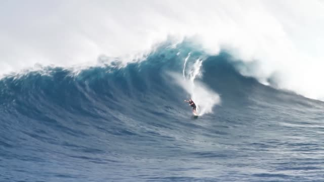 vídeos de stock, filmes e b-roll de big wave surfing - surfe