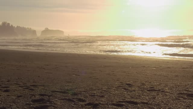 vídeos de stock, filmes e b-roll de big waves in pacific ocean - olympic national park