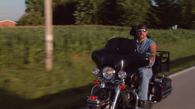vídeos y material grabado en eventos de stock de ms biker riding down country road with dog riding on back/ appleton, wisconsin - motociclista