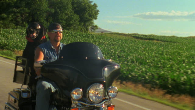 vídeos de stock e filmes b-roll de ms, ts, biker with black labrador dog riding motorcycle on rural road,  appleton, wisconsin, usa - dono de animal doméstico
