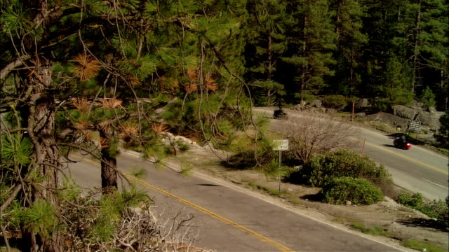 ws pan bikers driving motorcycles on curvy road in sierra national forest / fresno county, california, usa - フレスノfresno点の映像素材/bロール