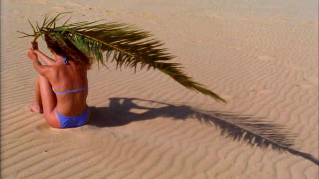 A bikini-clad woman sitting on the sand holds a palm frond over her head.