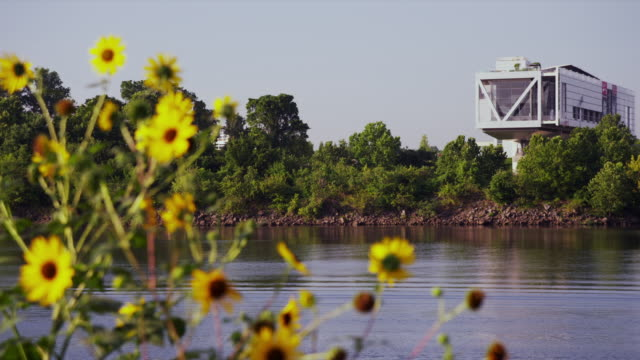 Bill Clinton Presidential Library with Arkansas River and sunflowers in the foreground