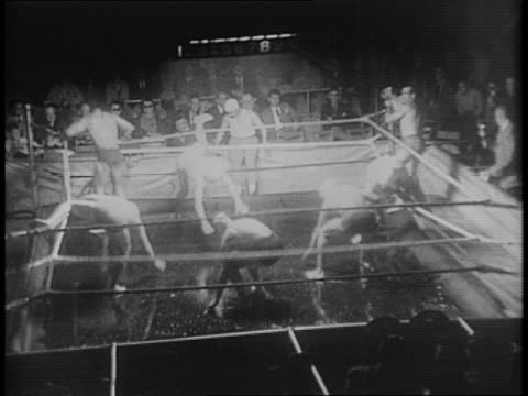 bill slater at microphone dissolves to wrestling rink covered in molasses / montage of wrestlers competing in molasses and feathers - molasses stock videos and b-roll footage