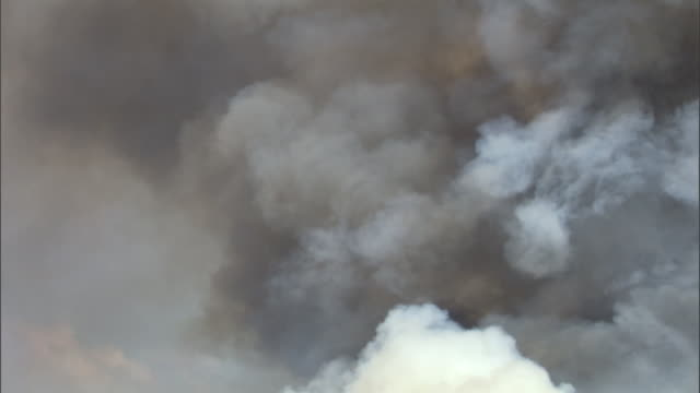 billowing smoke from forest fire, yellowstone, usa - smoke physical structure stock videos & royalty-free footage