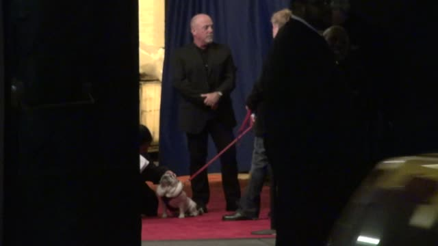 stockvideo's en b-roll-footage met billy joel and his dog at stings 60th birthday concert at the beacon theater in new york 10/01/11 - billy joel