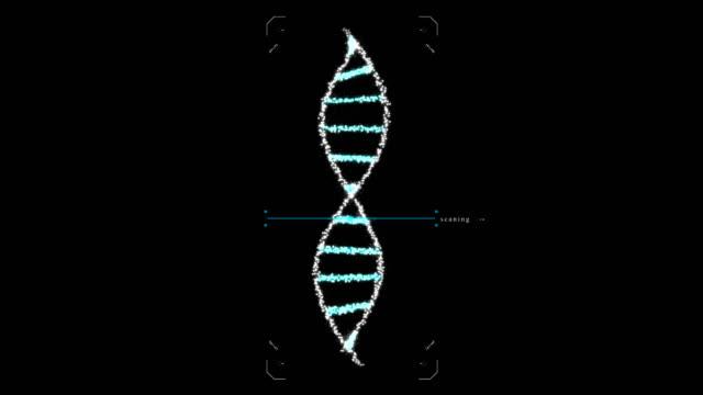 Biologische engineering genetische modificatie GGO's genetisch gemodificeerd organisme. DNA ontwerpconcept. Donkere achtergrond