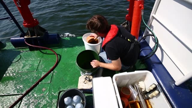 biological technical assistant, fabian wendt, collects samples on board the research vessel 'polarfuchs' in the kiel fjord close to the geomar... - vessel part stock videos & royalty-free footage