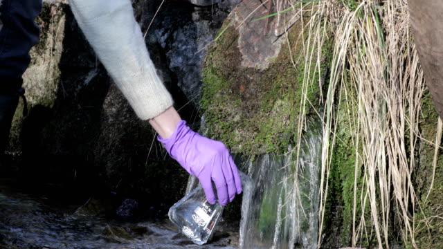 vídeos de stock, filmes e b-roll de biólogo examinando dreno de água doce na natureza - amostra científica