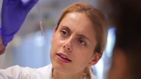 vídeos y material grabado en eventos de stock de examen de muestras de tubo de ensayo en el laboratorio del biólogo - explorar nuevo territorio