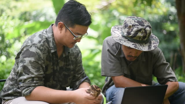 Biologist team using a laptop for record some information of the owl.