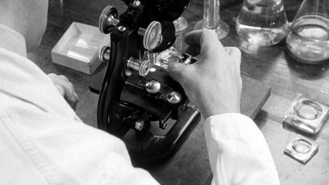 1948 montage biologist testing water samples for microscopic organisms / london, england - microscope stock videos & royalty-free footage