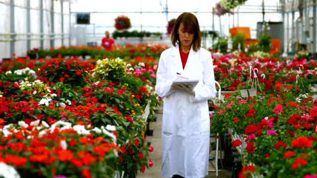 Biologist working at a flower greenhouse.