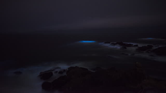 bioluminesent waves on the pescadero coast. - red tide stock videos & royalty-free footage