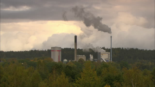 WS Biomass plant surrounded by trees / Vaxjo, Sweden