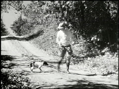 vídeos y material grabado en eventos de stock de bird dogs - 2 of 10 - perro cazador