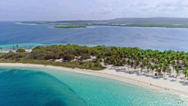 vidéos et rushes de vue d'oeil d'oiseau de plage tropicale d'île avec des cocotiers, le sable, les vagues et les eaux turquoises - bahamas