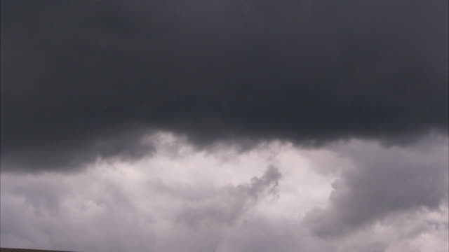 a bird flies beneath dark clouds as they move across the sky. available in hd. - grey colour stock videos & royalty-free footage