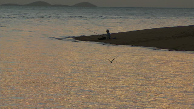 vídeos de stock e filmes b-roll de bird flies low over water / anonymous person sits on beach sandbar fishing with rod pan to bird flies low over water / dusk anonymous people sit on... - banco de areia