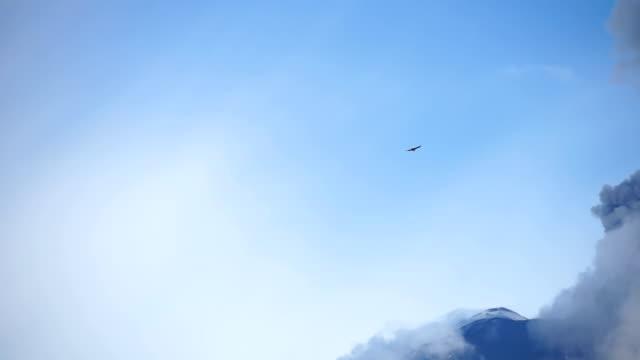 bird flies near volcanic crater during eruption process - ecuador stock-videos und b-roll-filmmaterial