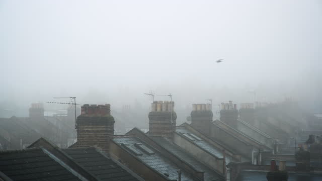 bird flies over rooftops in fog, london - cold temperature stock videos & royalty-free footage