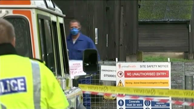 bird flu outbreak at yorkshire duck farm england east yorkshire nafferton bird farm ext cordon tape at entrance to nafferton bird farm where an... - informationsskylt bildbanksvideor och videomaterial från bakom kulisserna
