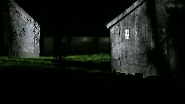 stockvideo's en b-roll-footage met bird flu outbreak at yorkshire duck farm england east yorkshire nafferton geese seen through window of barn at nafferton bird farm barn containing... - vogelpestvirus