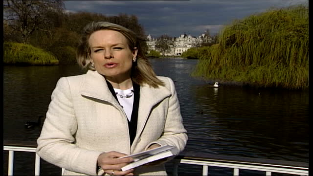 swan in scotland tests positive for h5n1virus book illustration of a swan pull out reporter to camera andre farrar interview sot there are chances... - avian flu virus stock videos and b-roll footage