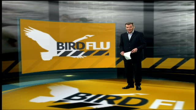 Swan in Scotland tests positive for H5N1virus ENGLAND London GIR INT Reporter to camera in front of videowall / GRAPHIC Details of ITV poll / Alick...