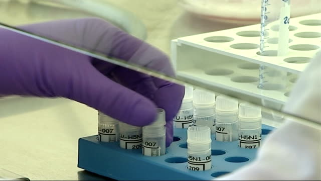 bird flu vaccine development; scientists in laborators filling vials with liquid scientist gives woman anti-bird flu injection - scienziata video stock e b–roll