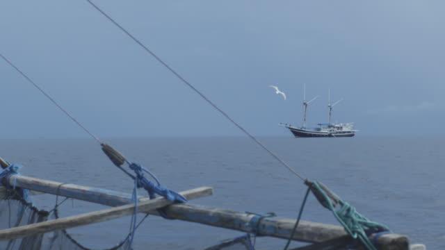 Bird flying near fishing boat, Indonesia, 2012