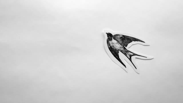 vídeos de stock, filmes e b-roll de pássaro voador do papel - animação em stop motion