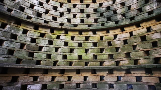 bird perches inside an ancient dovecote-france. - david johnson stock videos & royalty-free footage