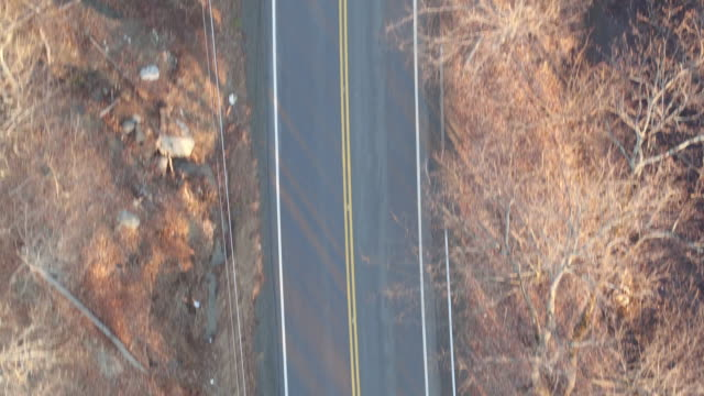 Bird's eye view along two-lane road on a winter day in New York