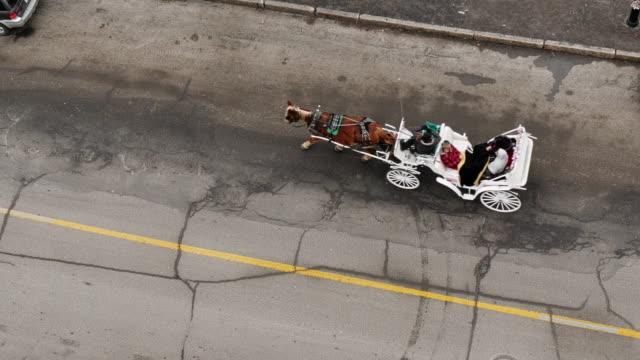 bird's eye view of horse-drawn carriage in montreal - モントリオール旧市街点の映像素材/bロール