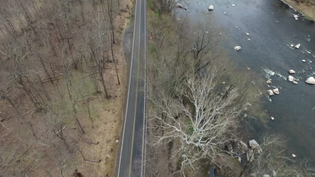 vidéos et rushes de bird's eye view of one lane road running parallel to a river - arbre sans feuillage