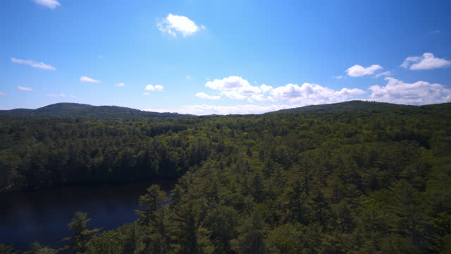birds eye view of pine forest with a pond and summer camp nearby - landscape scenery stock videos & royalty-free footage