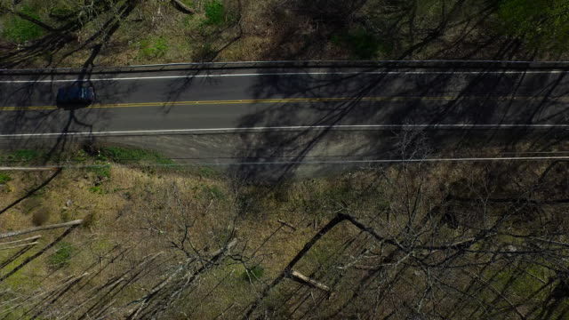 bird's eye view of traffic on one lane road surrounded by trees in upstate new york - new paltz stock videos and b-roll footage