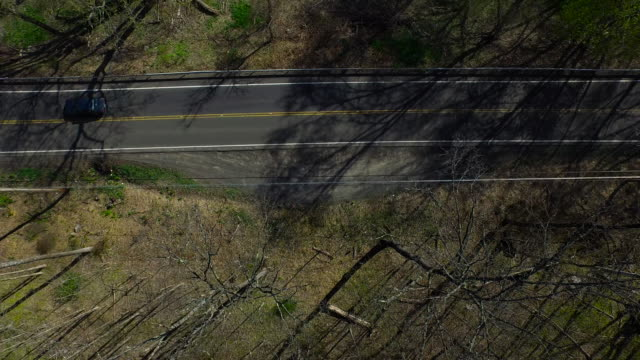 bird's eye view of traffic on one lane road surrounded by trees in upstate new york - contea di ulster stato di new york video stock e b–roll