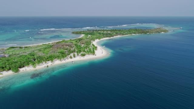vidéos et rushes de vue d'oiseau de plage tropicale d'île avec des cocotiers, le sable, les vagues et les eaux turquoises - rive